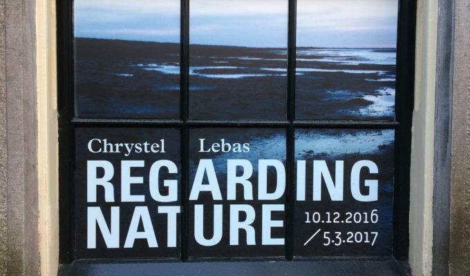 Regarding Nature - Chrystel Lebas
