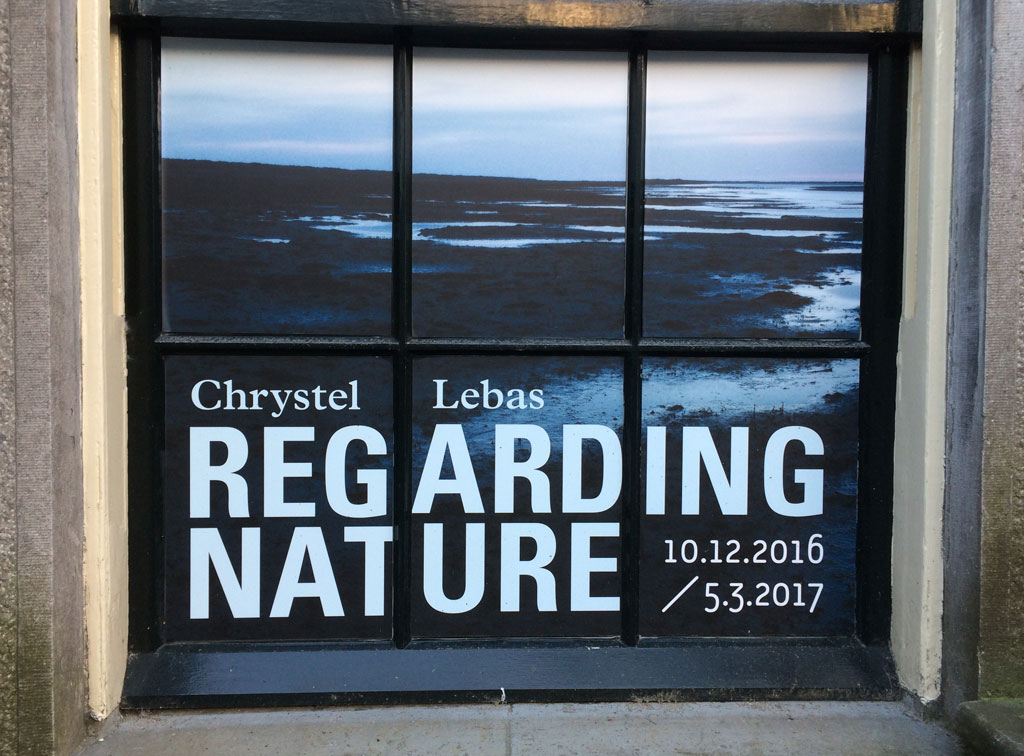 Regarding Nature - Chrystel Lebas