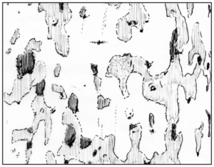 Plataan of Platanus met camouflageprint