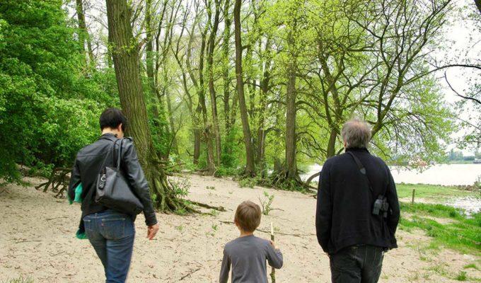 Bomen Langs De Rivier